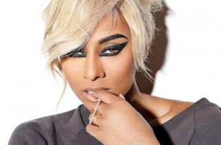 celebrity-hair-amerie-and-the-many-different-shades-of-black-blonds