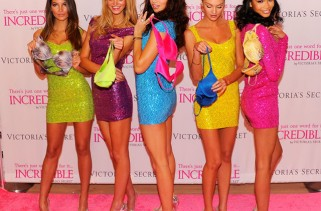 chanel-iman-and-other-victorias-secret-models-debut-the-incredible-bra