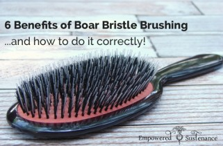 healthy-choice-natural-boar-bristle-brushes