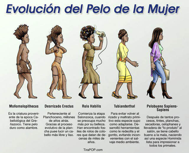 the-evolution-of-african-american-hair-from-spanish-to-english-translation
