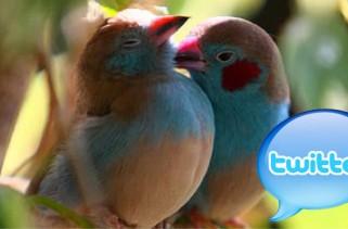 twitterlove1
